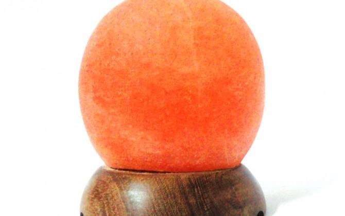 Globe lamp2